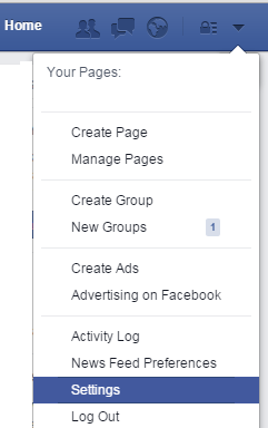 Facebook Setting Page